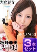 【旧作3本セット販売】skyhigh set6